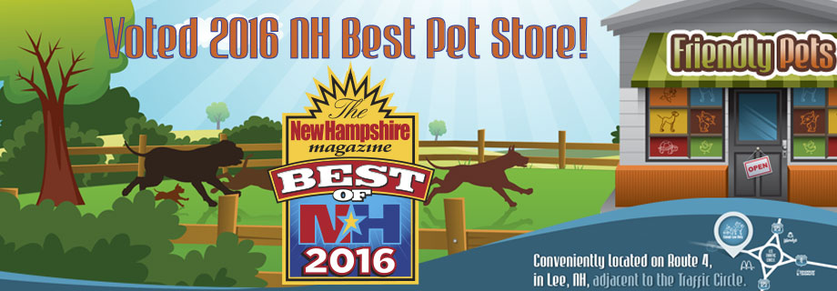 Friendly Pets New Hampshire Pet Store More Than Just A