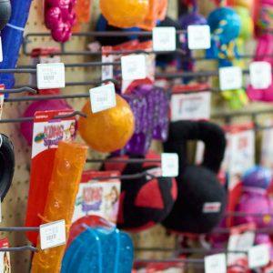 Dog chew toys at Friendly Pets