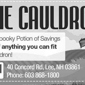 Friendly Pets Cauldron Sale Website Promotion