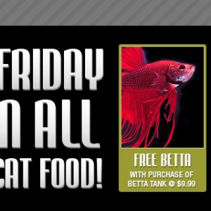 Black Friday Friendly Pets - Pet Supply Store Seacoast Lee Barrington NH