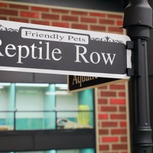 Reptiles Row at Friendly Pets, Exeter!